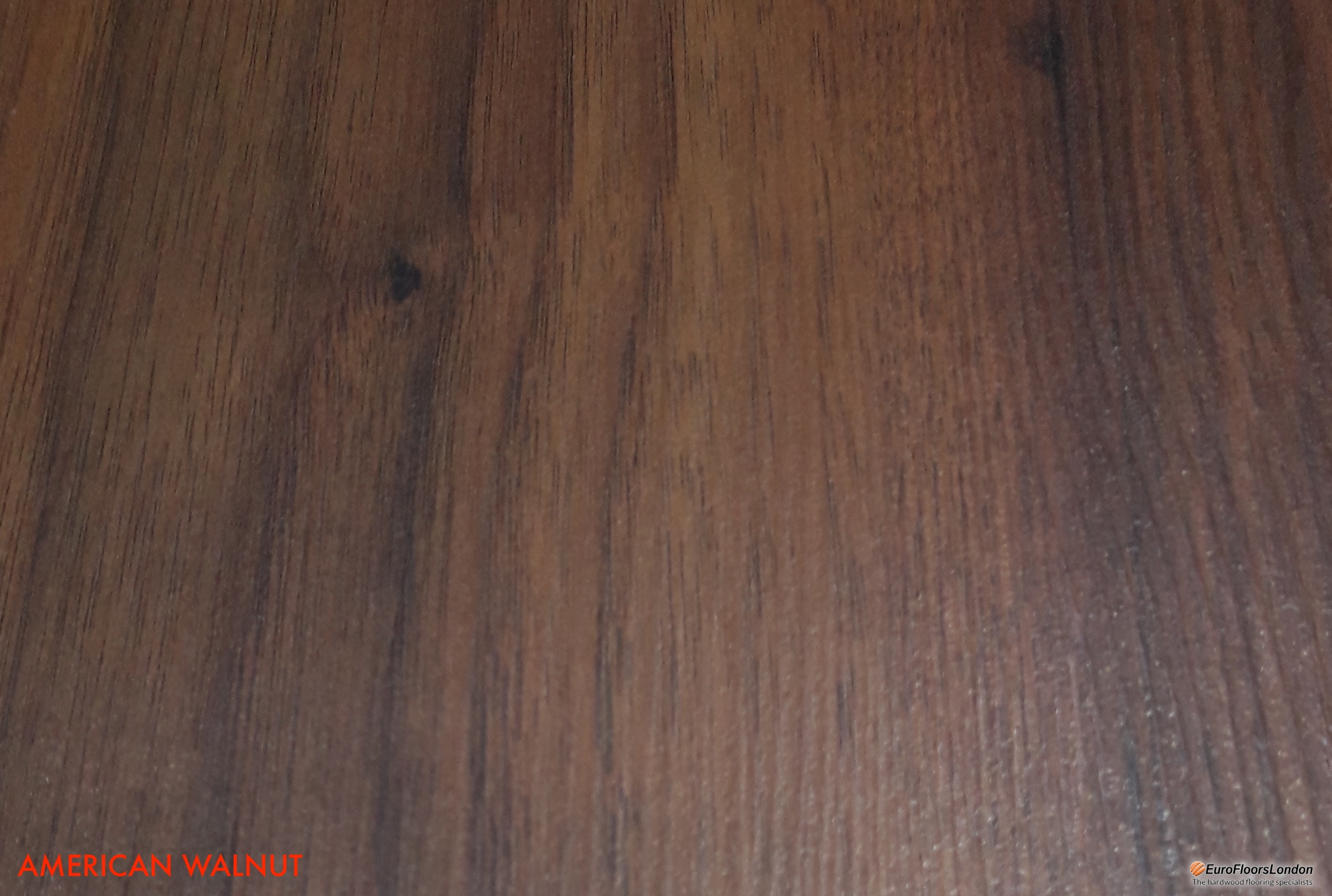 Premium Laminate Flooring plank. coloured to look as wood floors.
